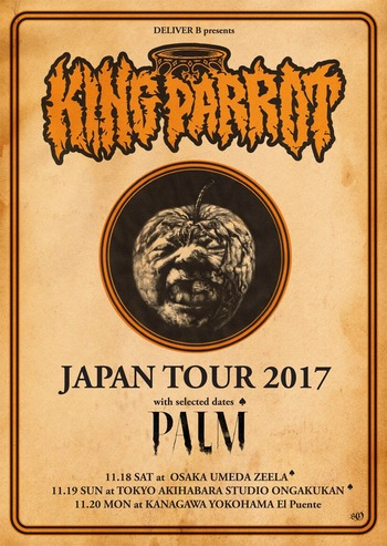 king parrot japan tour 2017