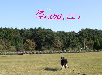 ♪マリン、キャッチ〜!