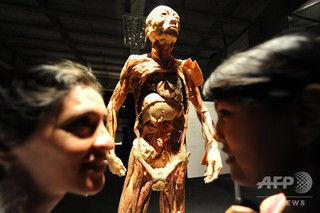 2chまとめ【スイス】人体標本展を中止、拷問死した中国人(気功集団、法輪功のメンバー)の可能性