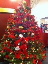 クリスマスツリーホンコン