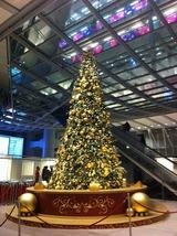 香港HSBC本店クリスマスツリー