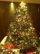 香港クリスマスツリー!