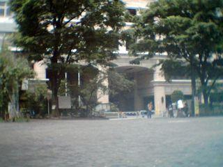 sakurei1