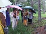 雨の中の慰霊