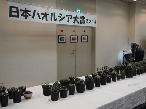 kaijyo-2014-4-20
