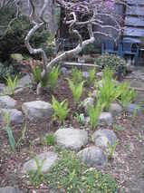 2010 4月日記 022
