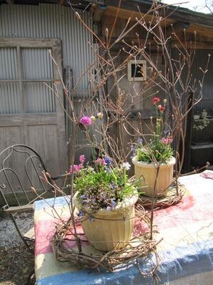 花とハーブの教室 013