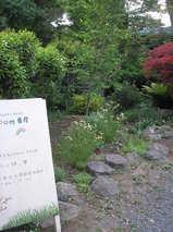 2009 5月日記 014