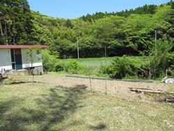 いすみの庭2012 5月 009