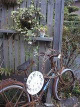 庭と植物 028