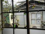 2009 2月日記 043