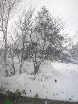 2011冬 万座温泉 012