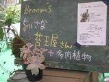 2010 5月日記 051
