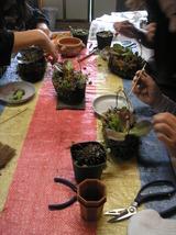 花とハーブの教室 081