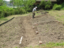 いすみの庭2012 5月 021
