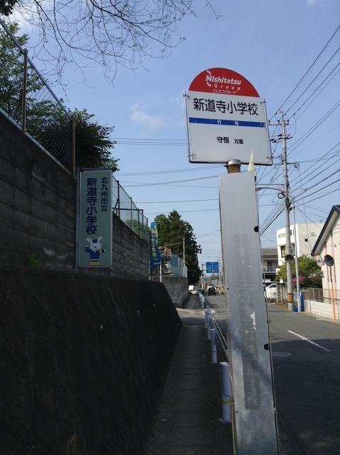 sagabiyori06
