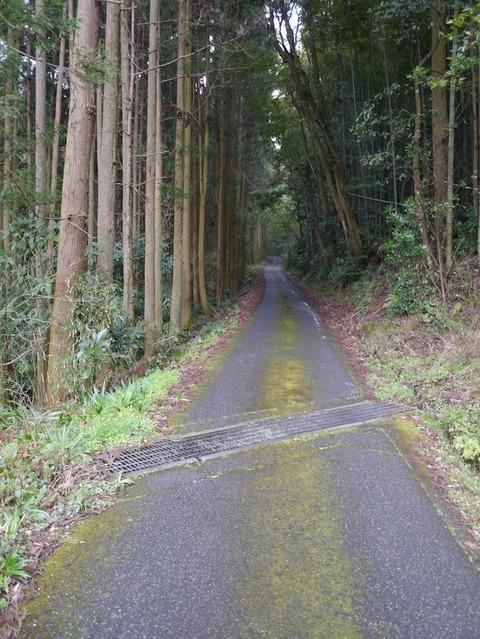 shindouji_b01
