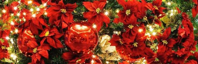 christmas57 のコピー