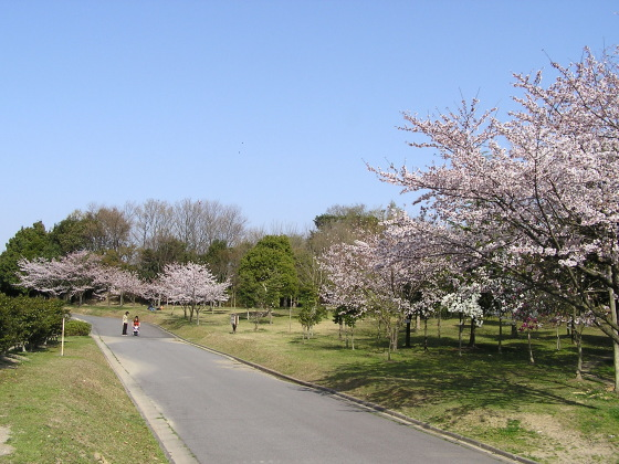 nanbu_park02