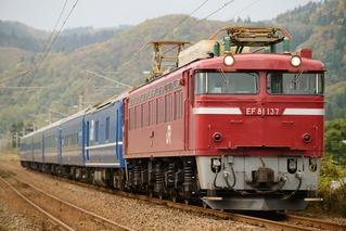 DSC_8696
