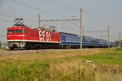 EF81_029