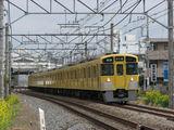 2000N_sakura_007