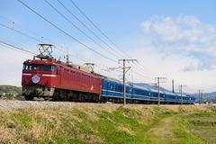 DSC_4697
