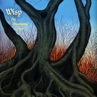 wisp-the-shimmering-hour-2009