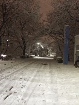 写真 2014-02-14 19 45 22