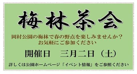 岡村梅林2019年茶会