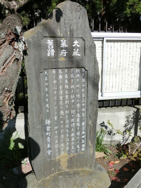 CIMG5846
