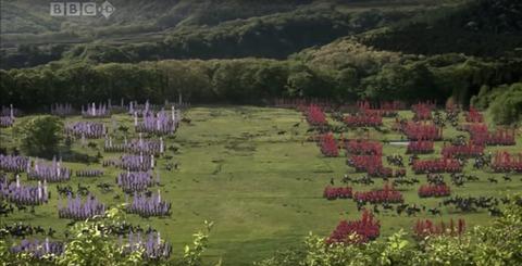 The Battle of Sekigahara 開戦直前