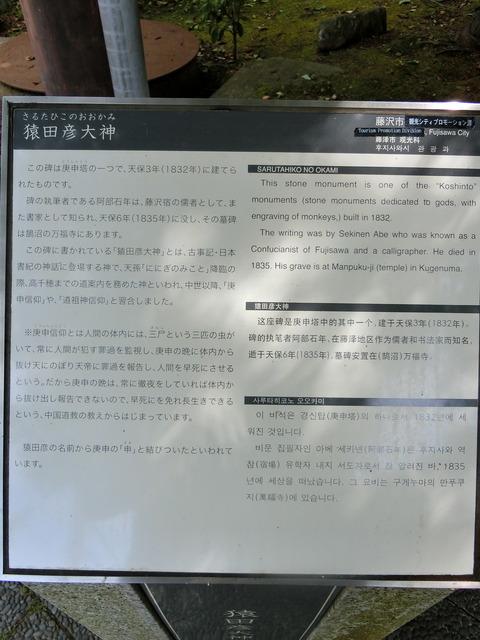 CIMG4312