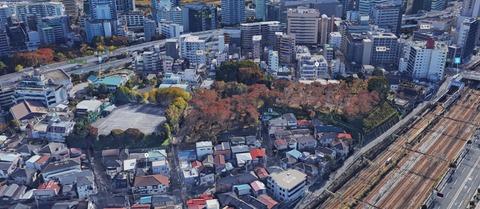 権現山城址遠景(Google map)