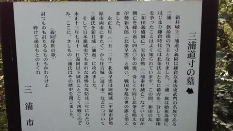 DSC_0230