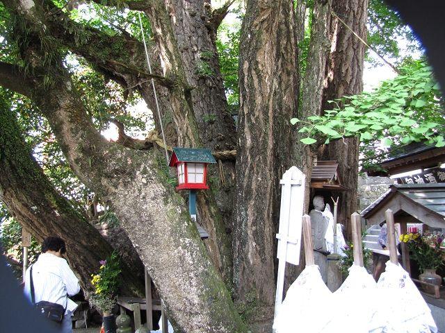 高塚地蔵尊 035 (22)s  土産物店を覗きながら行くと再び鳥居があります。高塚愛宕地蔵尊は
