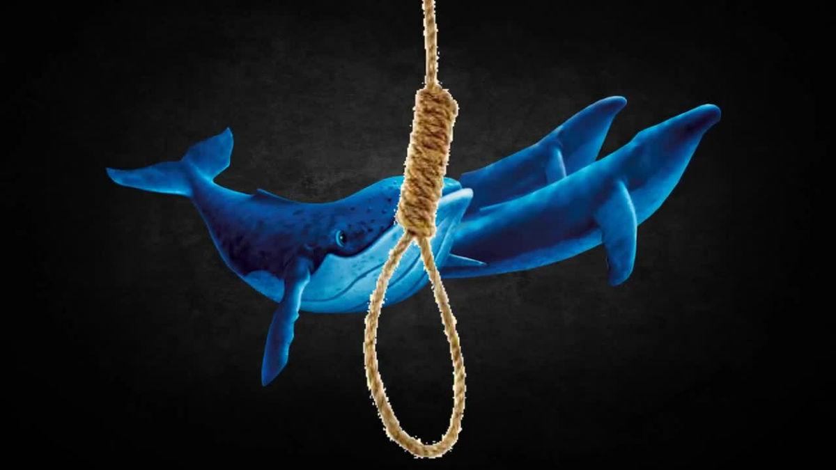 集団自殺ゲームの青いクジラって面白い社会現象よな