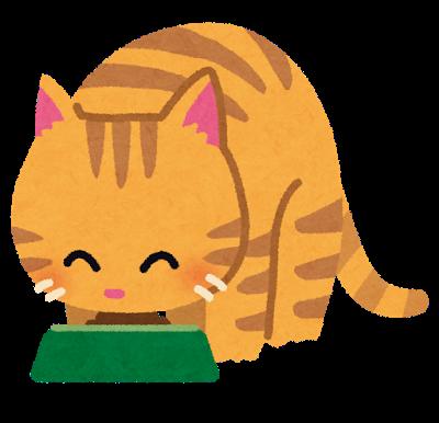 名古屋で殺処分危機の猫30匹、大阪の松井知事「守ってちょうよ」→河村市長から処分しないと返信