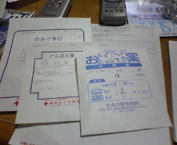 c9826fdc.jpg