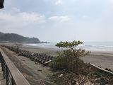 Johnny 's beach
