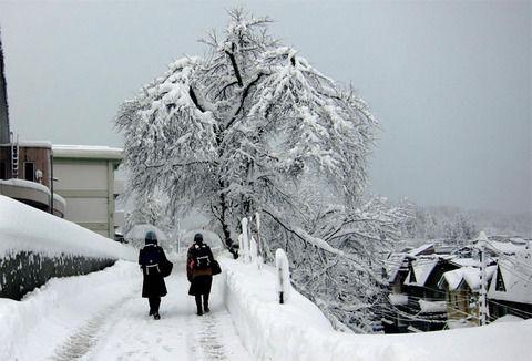 【衝撃】「嫁が若い男と逃げた!行方を探してる!」←雪国のとある冬にこんな騒動が。しかし春になり、雪が解け始めた頃に衝撃の事実が判明する事に・・・