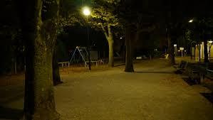 深夜の公園で童心に戻り、一人で遊んでいたらいきなり警官に職質された。