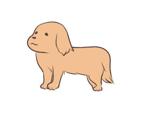 【動画】世界一賢いイヌが爆誕wwwwwwww