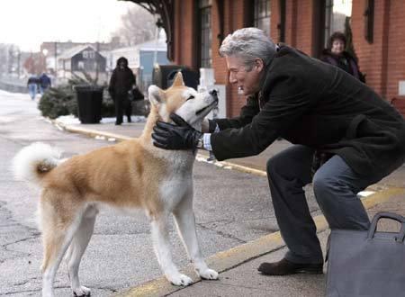 寡黙で堅物、小さい頃は怖い存在だった父が犬を飼い始めて一変。 犬 馬 鹿 に!!父『今日、僕チェルたん連れて郵便局行ったんだけどね~』母「(呆)」