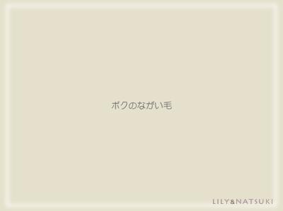 poem_banndana_img02