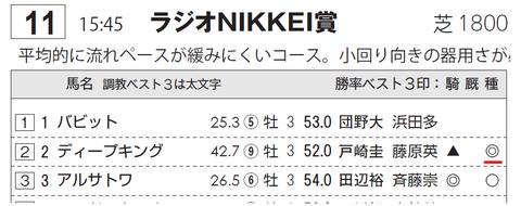 ディープキング(「サンスポZBAT!エイト競馬データシート」)