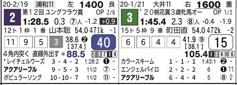 CapD20200325_15