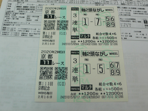 【馬券】2回京都6日11