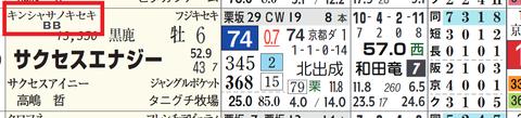 サクセスエナジー(キンシャサノキセキ産駒)