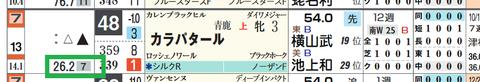 カラパタール(予想人気)
